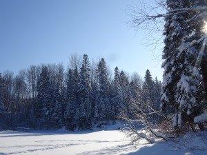 -2020-01-14 Canada Chicoutimi Parc de la rivière du Moulin DSC02686