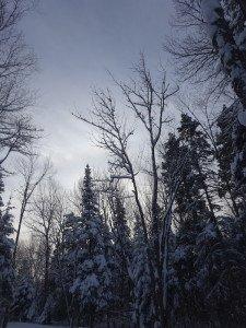 -2020-01-14 Canada Chicoutimi Parc de la rivière du Moulin DSC02701