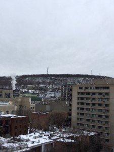 IMG_3088 2020-01-04 Canada Montréal - Le Mont Royal