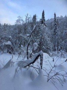IMG_3249 2020-01-11 Canada Chibougamau Mont Juggler