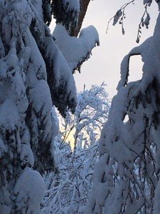 IMG_3251 2020-01-11 Canada Chibougamau Mont Juggler