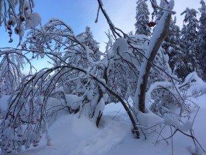 IMG_3254 2020-01-11 Canada Chibougamau Mont Juggler