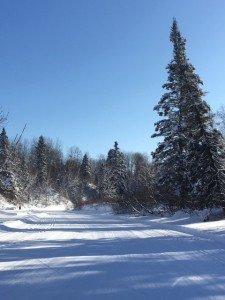 IMG_3309 2020-01-14 Canada Chicoutimi Parc de la rivière du Moulin