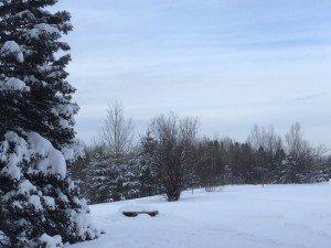 IMG_3335 2020-01-14 Canada Chicoutimi Parc de la rivière du Moulin