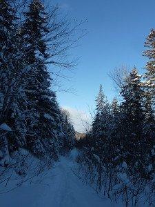P1070706 2020-01-05 Canada Ste Brigitte de Laval - Sentier du montagnard