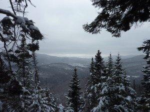 P1070754 2020-01-06 Canada Ste Brigitte de Laval - Sentier de la montagne à 2 têtes