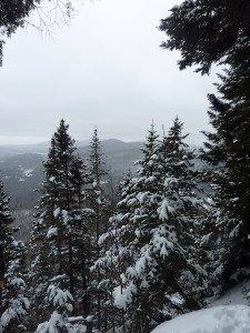 P1070757 2020-01-06 Canada Ste Brigitte de Laval - Sentier de la montagne à 2 têtes