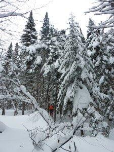 P1070914 2020-01-10 Canada Chibougamau Parc Obalski Margaux