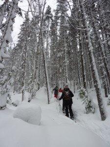 P1070958 2020-01-11 Canada Chibougamau Mont Juggler