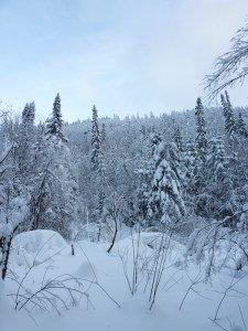 P1070974 2020-01-11 Canada Chibougamau Mont Juggler