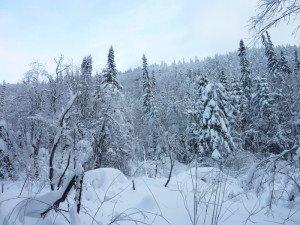P1070975 2020-01-11 Canada Chibougamau Mont Juggler