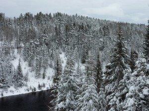 P1080050 2020-01-13 Canada Saint Honoré Sentier de la rivière Shipshaw - Chute Gagnon