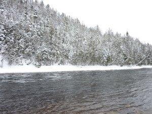 P1080073 2020-01-13 Canada Saint Honoré Sentier de la rivière Shipshaw - Chute Gagnon