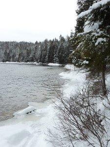 P1080079 2020-01-13 Canada Saint Honoré Sentier de la rivière Shipshaw - Chute Gagnon