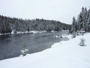 P1080103 2020-01-13 Canada Saint Honoré Sentier de la rivière Shipshaw - Chute Gagnon